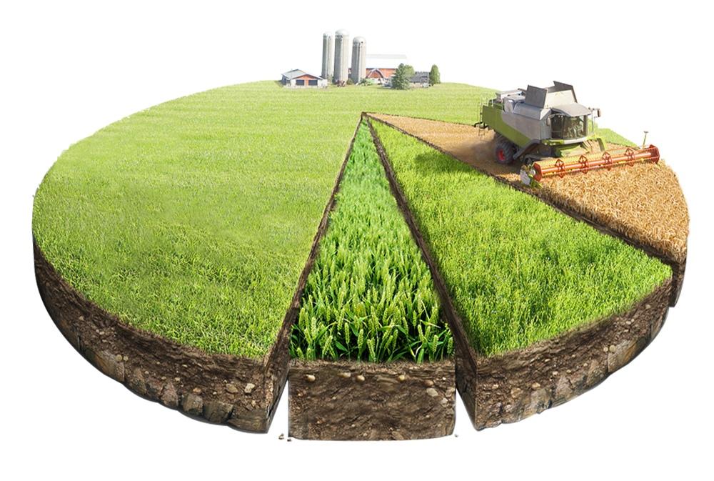 В Якутске наводится порядок с землями сельхозназначения