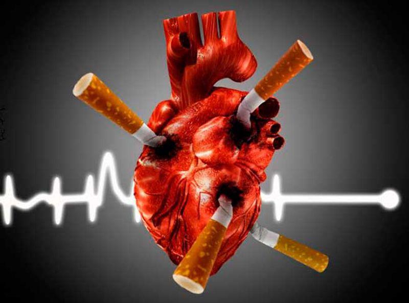 Вредные привычки  губят сердце