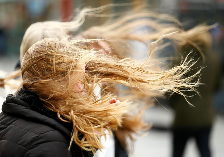 Сегодня возможны порывы ветра