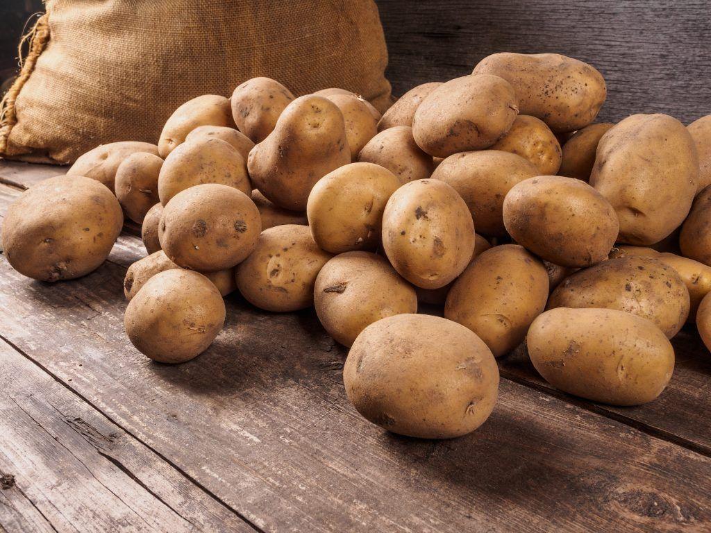 Картошка— второй хлеб