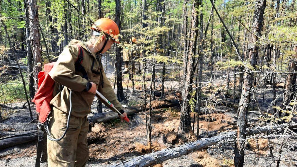 В восьми районах Якутии тушат 10 лесных пожаров