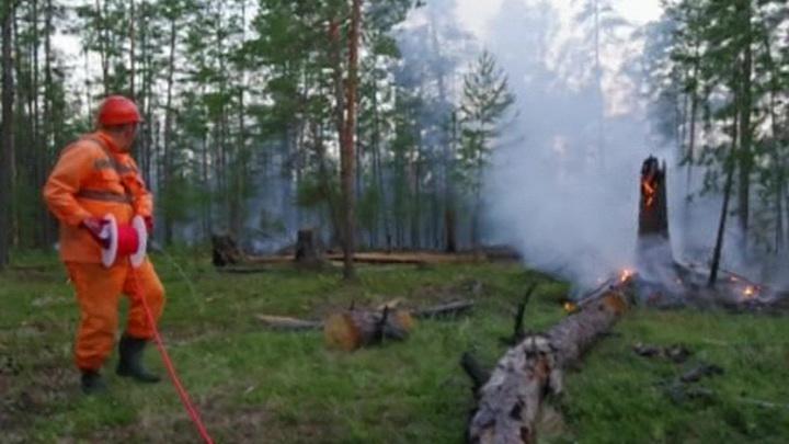 Почти тысяча человек тушит лесные пожары в Вилюйской группе районов