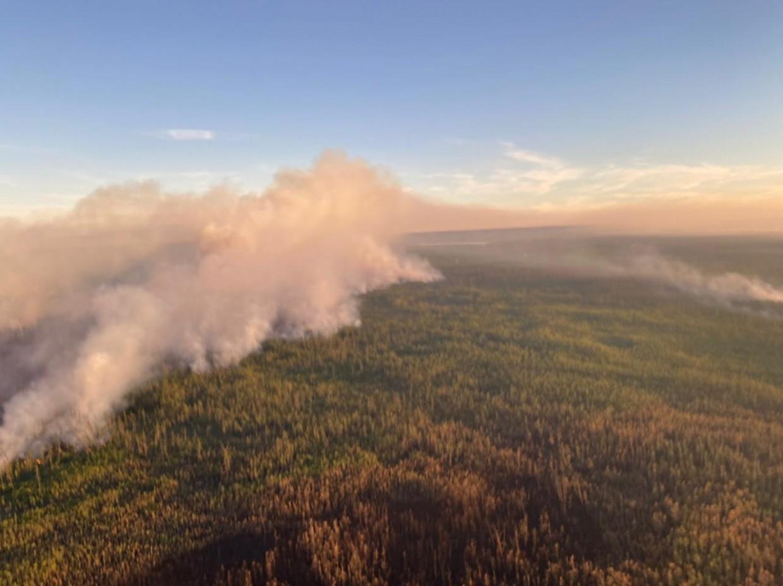 В Якутии действуют 28 лесных пожаров, за сутки ликвидировано девять