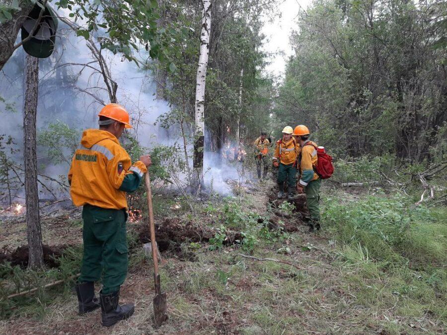 В Якутии тушат 103 лесных пожара