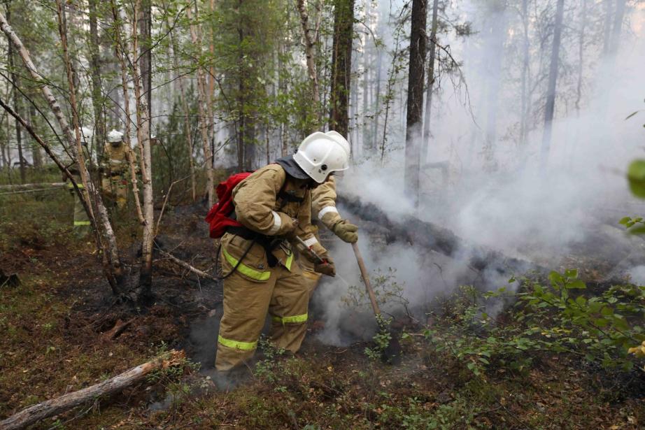 22 лесных пожара тушат в десяти районах Якутии