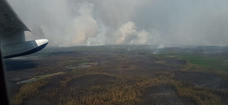 В Якутии действуют 127 лесных пожаров, за сутки ликвидировано 11