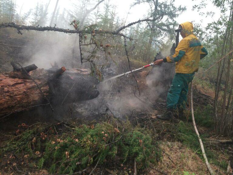 В Якутии действуют 159 природных пожаров, за сутки ликвидировано 14