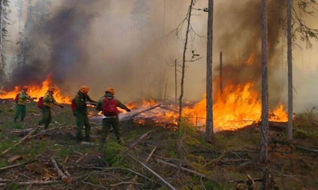 В Якутии тушат 22 лесных пожара
