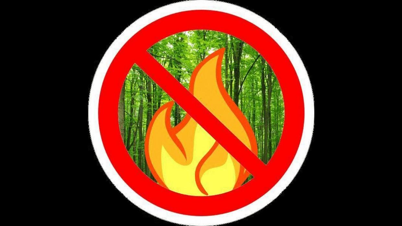 В Якутске объявлен особый противопожарный режим