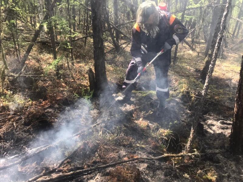 В Якутии действуют 28 пожаров, сложная обстановка сохраняется в Вилюйском районе