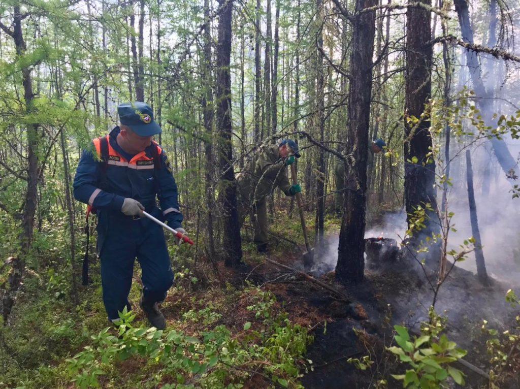 В Якутии действуют 314 лесных пожаров, за сутки ликвидировано 46