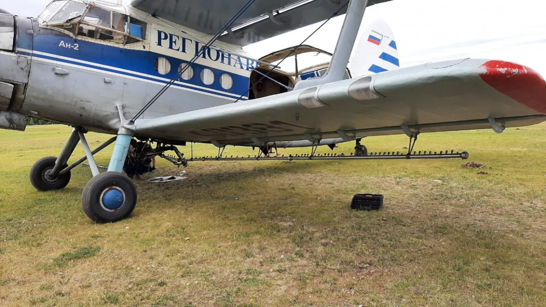 На борьбу с шелкопрядом в Якутии подключена авиация