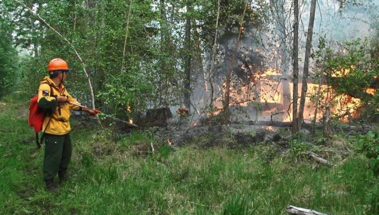 В Якутии действуют 300 природных пожаров,  за сутки ликвидировано 36