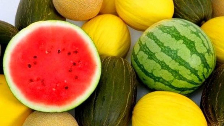 Какая польза от арбуза и дыни?