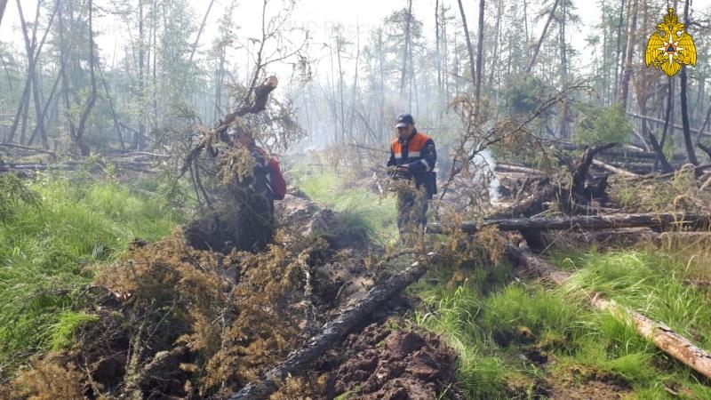 Сложная лесопожарная обстановка сохраняется на территории 10 районов
