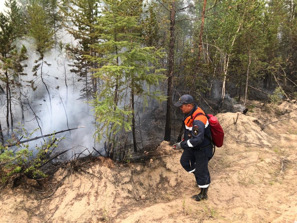 В Якутии действует 126 природных пожаров, за сутки ликвидировано 11