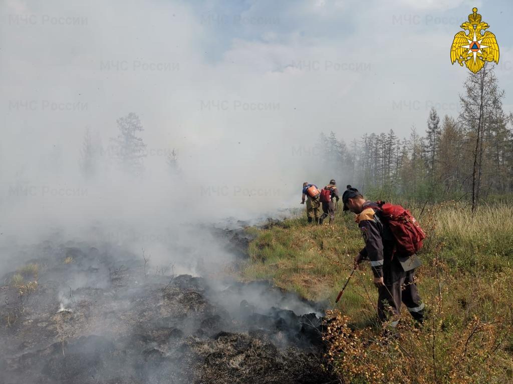 В Якутии действуют 154 природных пожаров, 45 ликвидировано за сутки