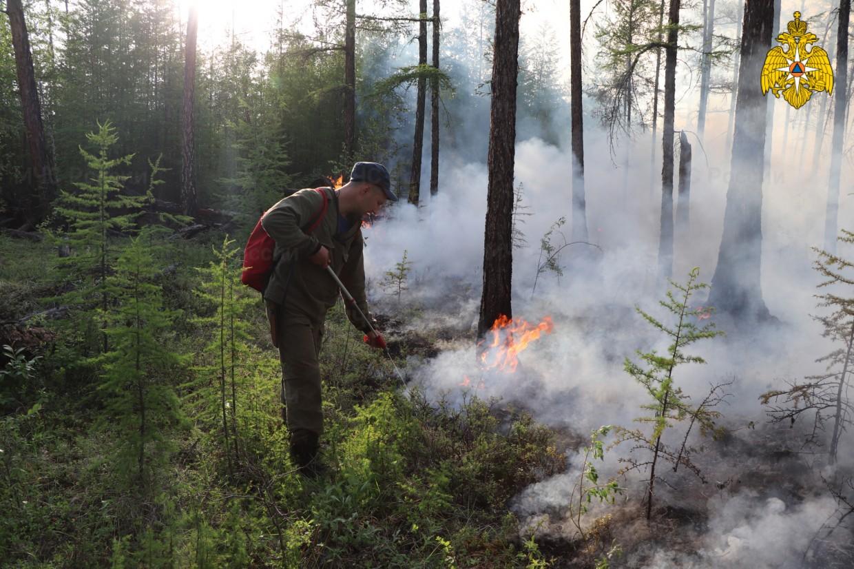 На территории Якутии действуют 308 природных пожаров, за сутки ликвидировано 18