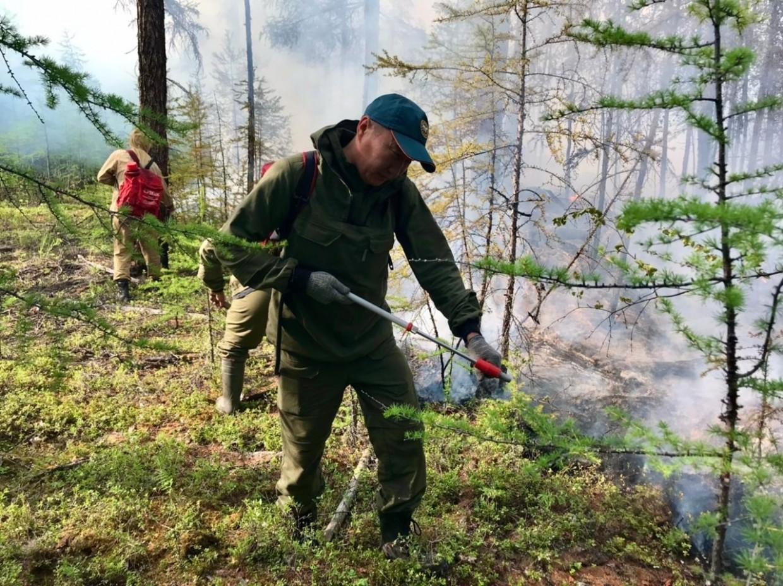 На территории Якутии действует 147 природных пожаров, за сутки ликвидировано 12