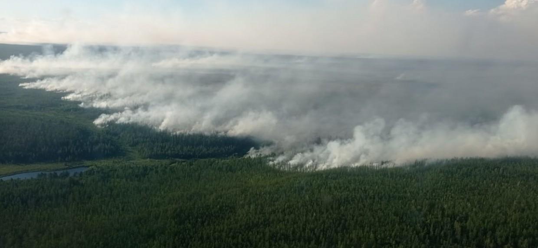 313 лесных пожаров действуют на территории 13 районов Якутии