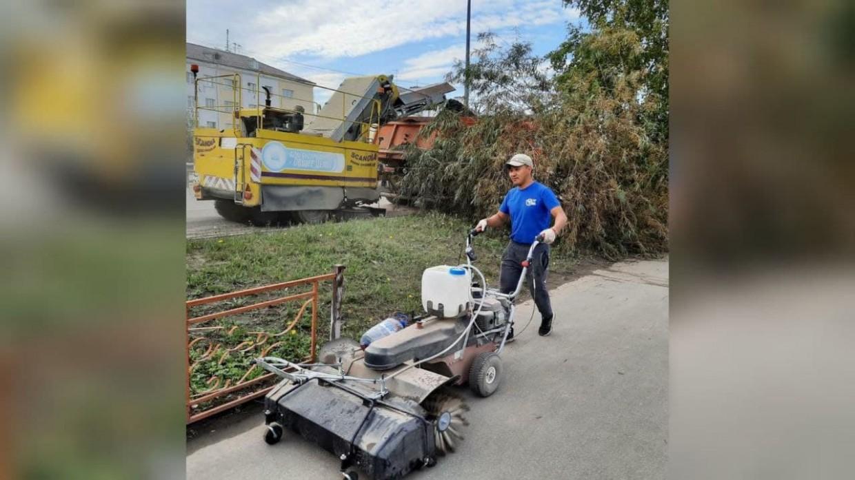 В Гагаринском округе Якутска волонтеры провели субботники