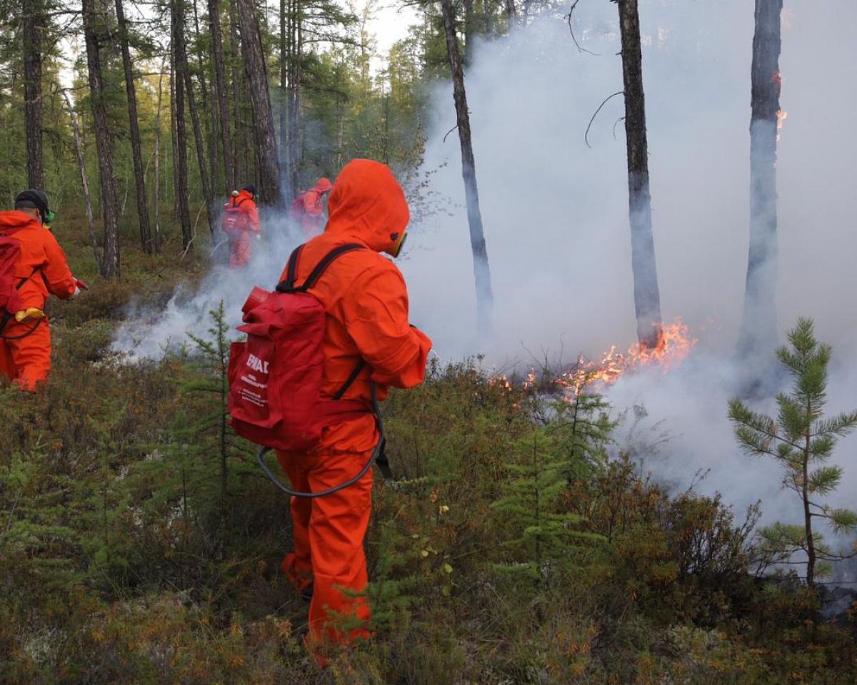 Лесной пожар удалось удержать на границе Якутска