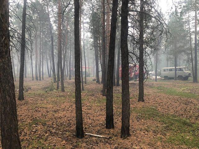 Лесной пожар на Вилюйском тракте Якутска ликвидирован