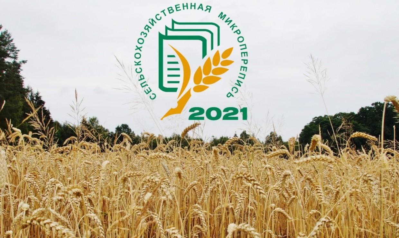 В России впервые пройдет сельскохозяйственная микроперепись