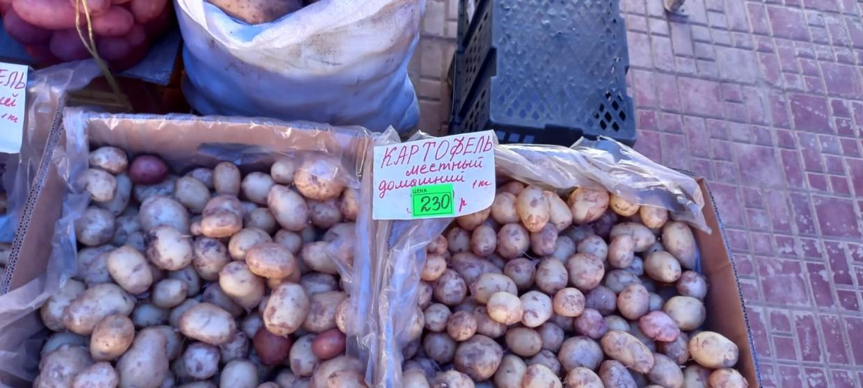 Фотофакт: килограмм картофеля в Якутске стоит 230 рублей