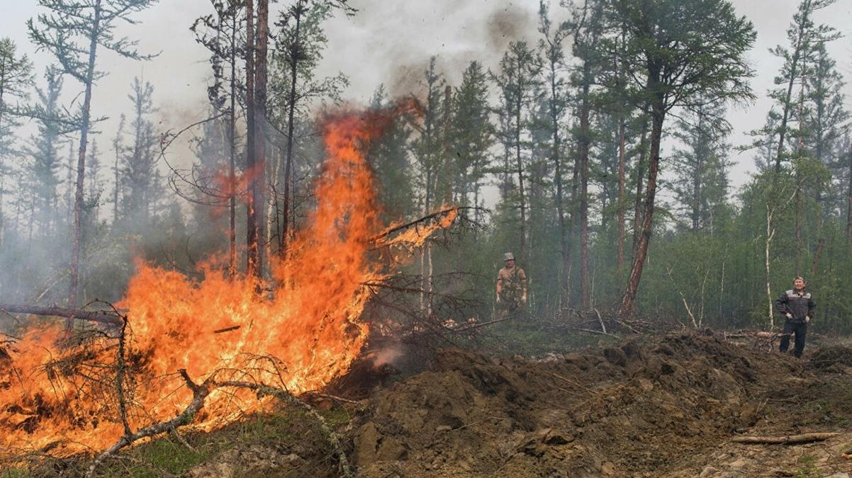 В Якутии за сутки обнаружен 21 лесной пожар