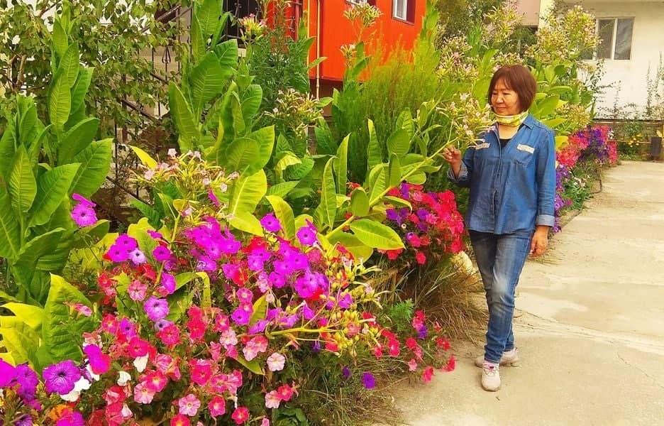 Жители дома на Жорницкого Якутска выиграли в конкурсе «Миллион цветов»