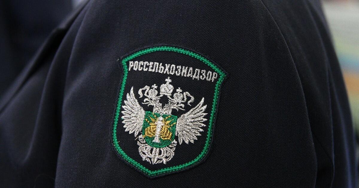 В Нерюнгри арестовали 13 кг колбасы