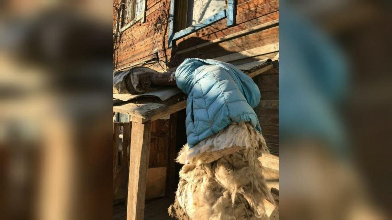 УК «Юнион» и «Теплоэнергия» спорят, кто должен был утеплить трубу к дому в Якутске