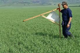 На «якутский гектар» подали заявки более 130 граждан других регионов