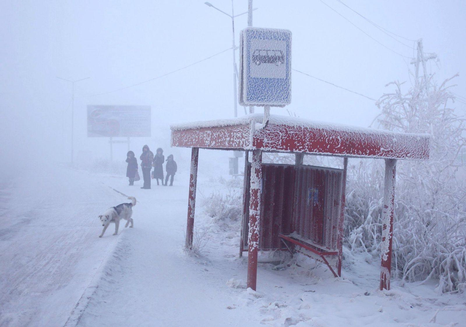 В Якутске пять автобусов «ЯПАК» вышли на городской маршрут