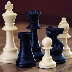 Сеанс одновременной игры по шахматам и шашкам