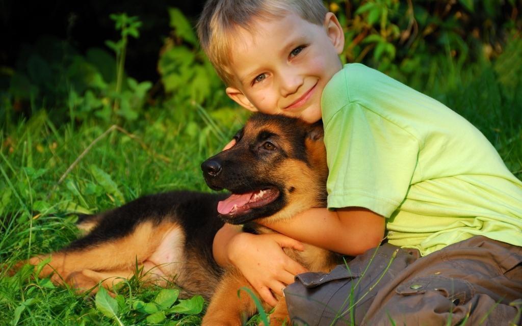 Детей с аутизмом лечат собаки