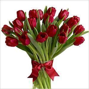 """Тюльпаны от """"Мисс Якутия"""""""