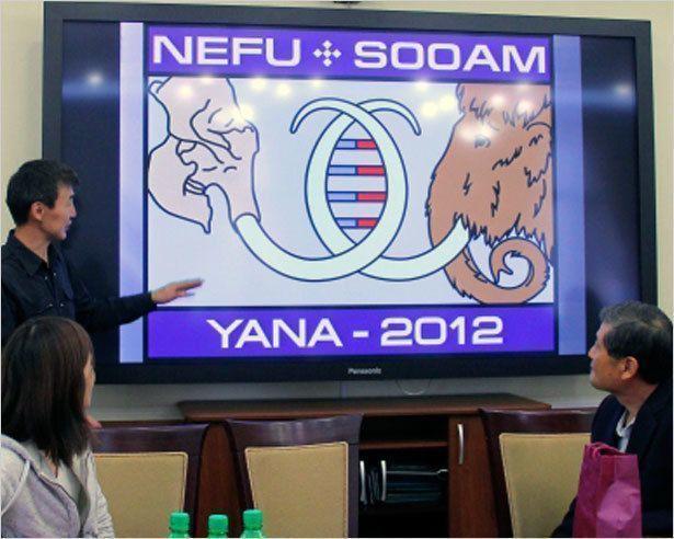 Исследователи СВФУ нашли «живые клетки» мамонта  в Усть-Янском районе