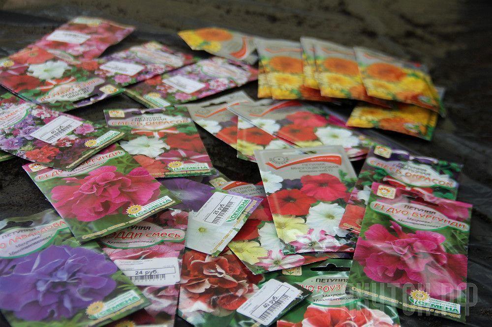 Стартовала акция «Миллион цветов»