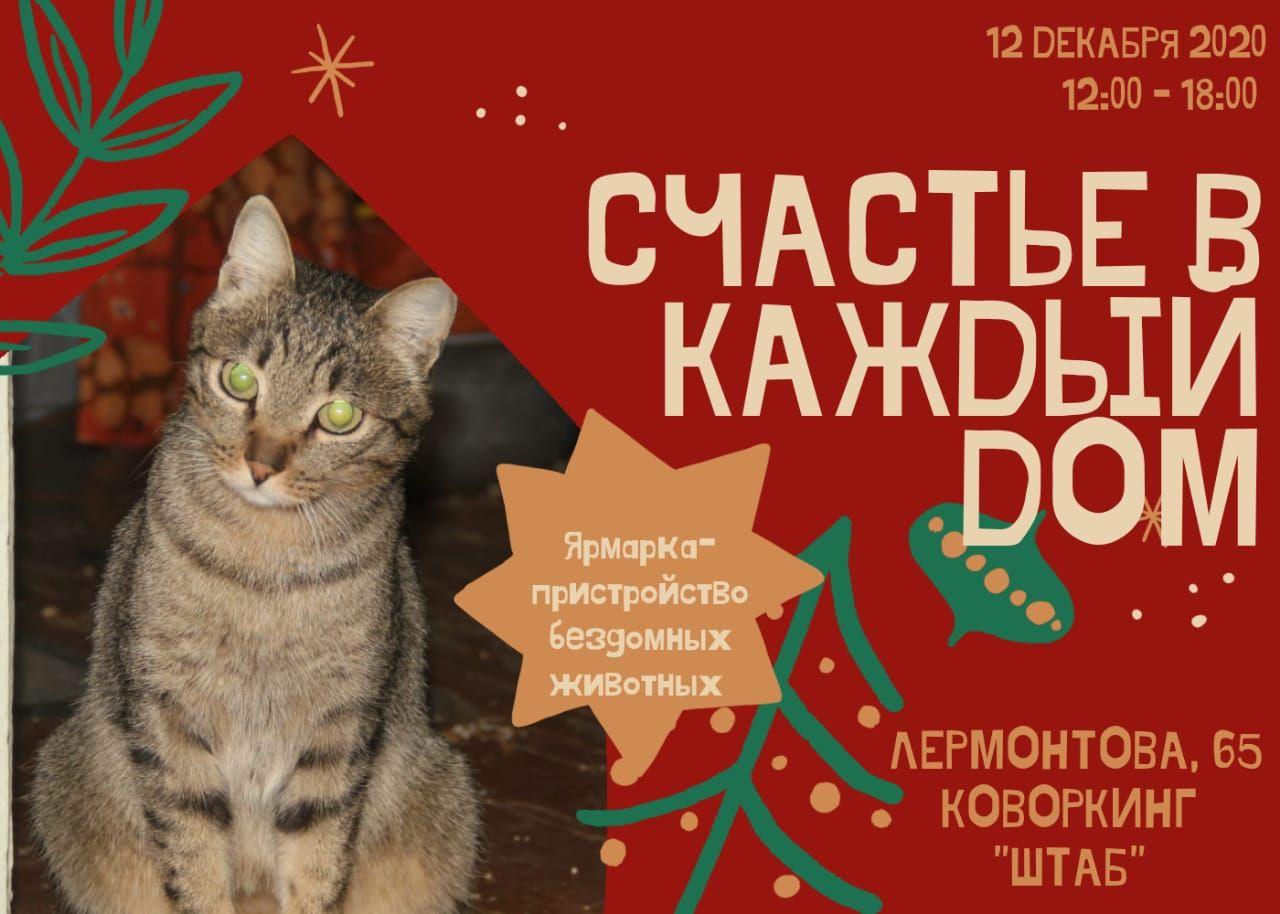 В Якутске состоится ярмарка по пристройству бездомных животных