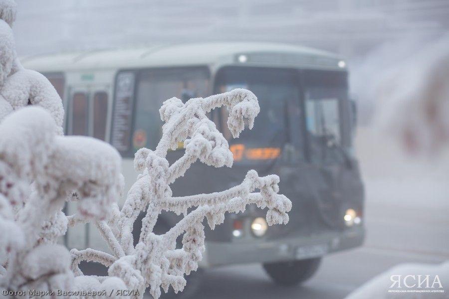 «Союз Авто»: автобусы сходят с маршрута из-за морозов
