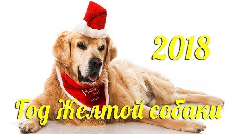 Готовимся к встрече Нового года!