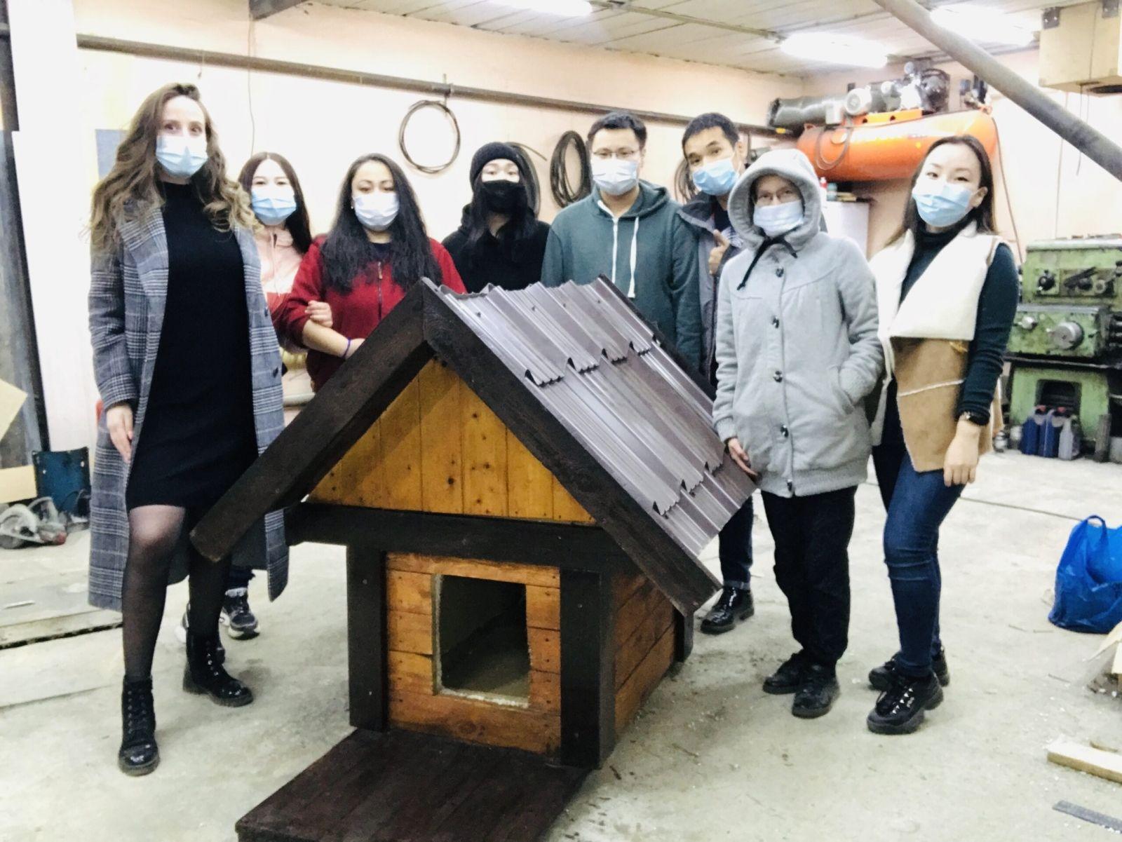 «Дом для друга»: жители Якутска построили 135 теплых будок для бездомных собак