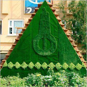Озеленение Якутска: Выводы и планы