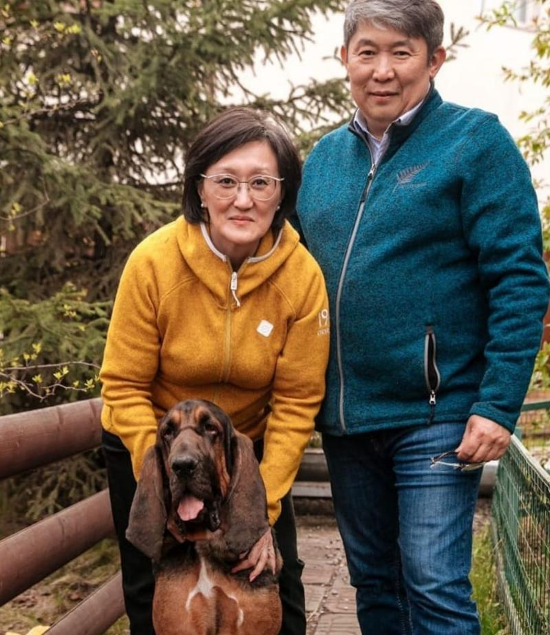 Безнадзорные животные и обязательная регистрация домашних питомцев в Якутске