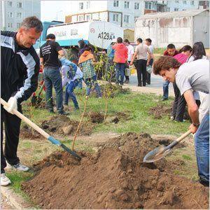 Правительство озеленяло улицу Кулаковского