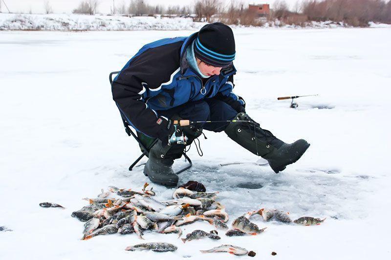 Рыба не стоит вашей жизни
