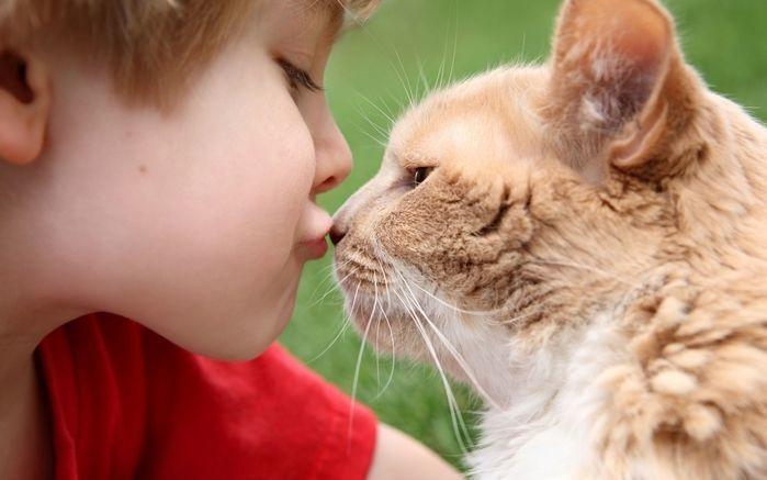 Дружба под контролем ветеринара