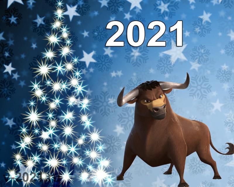 Берем быка за рога!  Или Как встретишь Новый год, так его и проведешь!